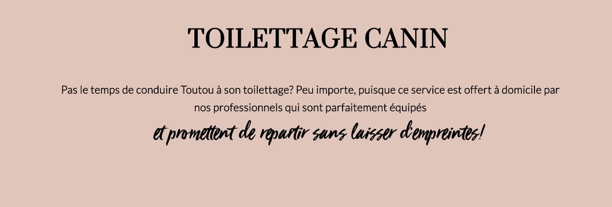 TOILETTAGE CANIN-